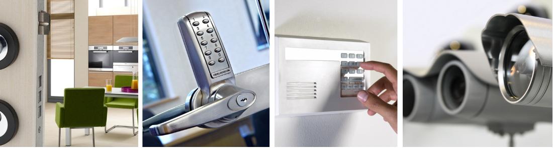 INS-Surveillance-Secure-Access
