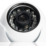 INS Surveillance Business Systems